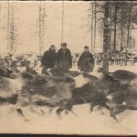 ПМОФ-1837 Фото На планшете 'В оленьем стаде'