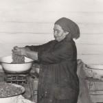 Стенякина Клавдия Михайловна в цехе обработки рыбы Аксарковского рыбозавода.ПМОФ-608