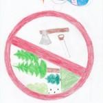 Берегите природу Автор Ирина Валитова 6 в класс