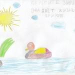 Берегите воду она даёт жизнь нашей природе. Автор Катя 6б кл