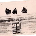 ПМОФ. 2602. Строительство здания почты в п. Аксарка 1958 г
