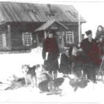 Собачьи упряжки тоже служили почтовикам